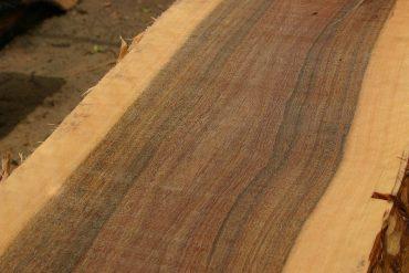 Timber Perth
